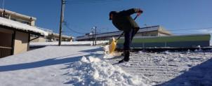 雪払い・雪下ろし・排雪
